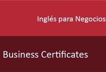 Inglés para Negocios (Business Certificates)